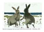 janefontane, jane fontane, young Australian artist, Sydney, newtown paddington, pop art, kudos gallery, college of fine arts, COFA, screen print, rabbits hares fighting, nature is a language, can't you read?